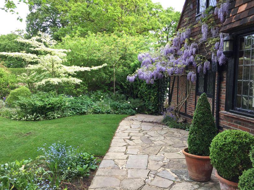 Garden Maintenance experts